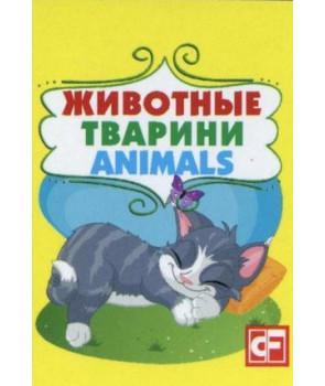 Книжка-картонка Животные