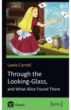 Through the Looking-Glass, and What Alice Found There