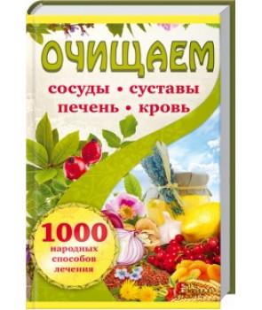 Очищаем сосуды, суставы, печень, кровь. 1000 народных способов лечения